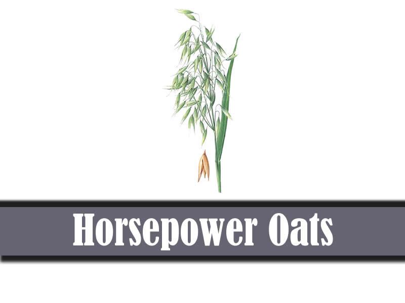 Horsepower Oats